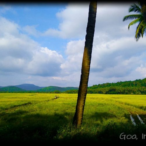 Goa honeymoon package pune tours