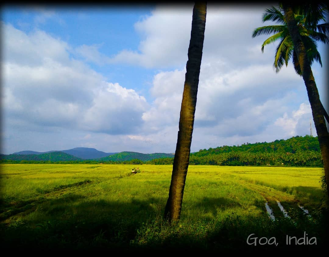 Goa honeymoon package pune tours